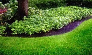 Bills Property Maintenance, Lawn Mowing Services, Lawn & Garden Maintenance, Hardscape Installations, Tree Removal, Arborist, Falmouth, Portland and Cumberland Maine