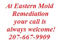 Eastern Mold Remediation, Mold Removal Company Eastern Maine